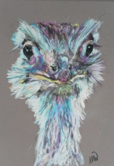 """Ostrich"" Pastel by Keren Dibbens-Wyatt using a reference photo by Jeannie Kendall with kind permission"