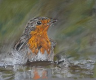 """Bath Time"" Pastel by Keren Dibbens-Wyatt using a reference photo by Kevin Thornhill with kind permission"