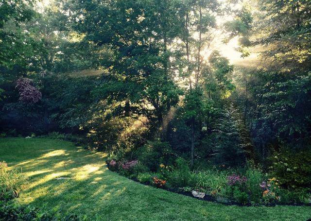 garden-952633_1280